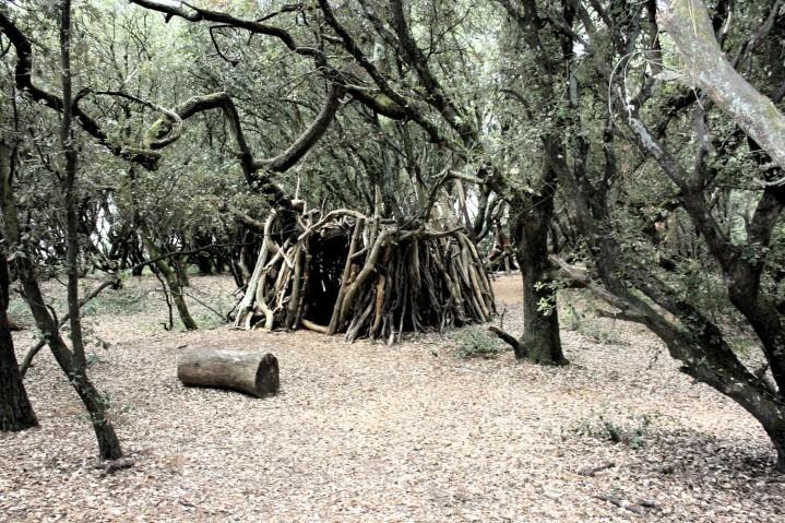 La dame blanche de la forêt deRagounite