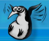 pingouin.png
